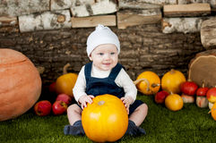Adorable baby with many different pumpkins on grass. Stock Photo