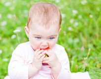 Adorable baby Royalty Free Stock Photos