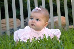 Adorable Baby in pink dress Royalty Free Stock Image