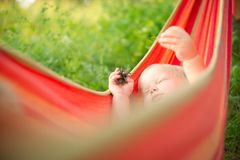 Adorable baby relaxing in hammock Stock Images