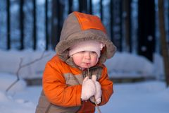 Adorable baby stay near branch try to bit it Stock Images