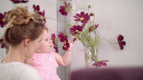 Adorable baby touching flowers at home. Kid eating beautiful flowers in vase. Adorable baby touching flowers at home. Infant child on mother hands touch violet stock footage