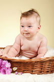 Adorable baby in wicker basket Royalty Free Stock Photos
