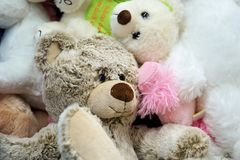 Adorable, Bears, Child Stock Photography