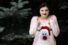 Adorable, Beautiful, Christmas Stock Image