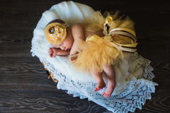 Adorable beautiful newborn baby girl. One week old newborn baby sleeping in basket. Child in a yellow skirt Royalty Free Stock Photos