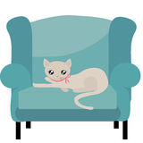 Adorable Beige Kitty Cat Stock Photo