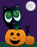 Adorable Black Cat with a Jack O'Lantern and a Full Moon Royalty Free Stock Image