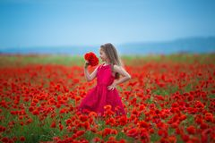 Adorable blond girl dressed in vamp dark red stylish attractive dress posing on meadow of poppies field with mountains on royalty free stock photo