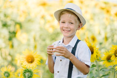 Adorable blond toddler boy funny eating bagel and drinking milk on summer sunflower field outdoors Royalty Free Stock Images