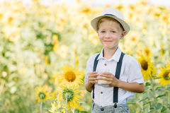 Adorable blond toddler boy funny eating bagel and drinking milk on summer sunflower field outdoors Royalty Free Stock Photos