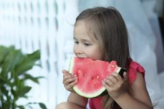 Adorable blonde girl eats a slice of watermelon outdoor Stock Image