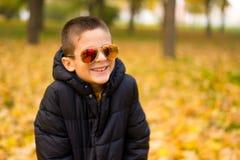 Adorable boy. In autumn park Royalty Free Stock Photo