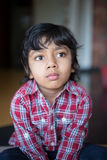 Adorable boy in checked shirt child staring with focus and attention stock image