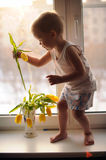 Adorable boy chooses the first spring flower. To give to mom on the day of birth stock image