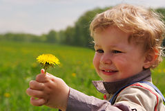 Adorable boy with dandelion in hand Stock Images