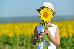 Adorable boy in hat hiding behind sunflower on yellow field outdoors. Kids portrait. Summer countryside agriculture Royalty Free Stock Photography