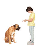 Adorable boy and his dog Stock Photo