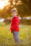Adorable boy with his teddy friend, sitting on a lawn Stock Photos