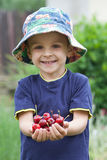 Adorable boy, holding red cherries Royalty Free Stock Photography
