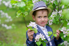 Adorable boy Royalty Free Stock Images
