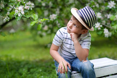 Adorable boy Royalty Free Stock Image