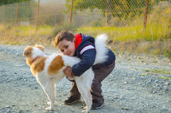 boy hug the dog Royalty Free Stock Photography
