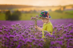 Adorable boy in purple field, holding flowers Stock Photo