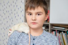 Caucasian boy with his pet, hand rat on his shoulder. Pets and childhood, care of animals, education of responsibility to. Pic royalty free stock photos