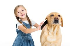 Adorable cheerful child giving smartphone to dog,. On white stock images