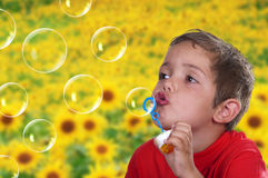 Adorable child blowing soap bubbles. In a field of flowers Stock Photography