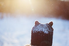 Adorable child boy in warm winter clothes under the snow in sunny winter day. Back view Royalty Free Stock Photos