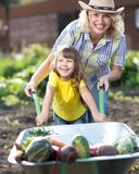 Adorable child girl and her mother pushing wheelbarrow with vegetables on a sunny day. Summer works in the garden. Kid stock photos