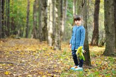 Adorable child girl walks in autumn forest Stock Photography