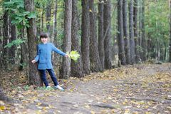 Adorable child girl walks in autumn forest Royalty Free Stock Images