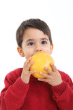 Adorable child with a grapefruit. A child with a grapefruit on white background Stock Photo
