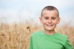 Adorable child in a wheat field Royalty Free Stock Image