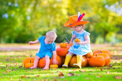 Adorable children at pumpkin patch stock photo