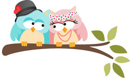 Adorable Couple Wedding Cute Owls Royalty Free Stock Image