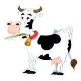 Adorable cow Stock Photo