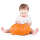 Adorable curious baby girl playing with big pumpkin Royalty Free Stock Image