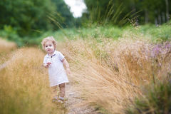 Adorable curly baby girl walking in high grass in autumn park Stock Images