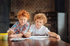 Adorable curly haired brother painting together Stock Photography