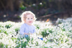 Adorable curly toddler girl in first spring flowers Stock Photo