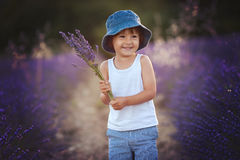 Adorable cute boy with a hat in a lavender field Stock Photography