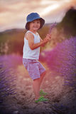 Adorable cute boy with a hat in a lavender field Royalty Free Stock Images