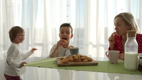 An adorable cute caucasian boy is eating cookie beside his young mother with blond hair. Little brother is stealing. Cookies stock footage