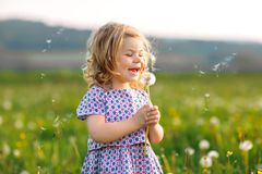 Adorable cute little baby girl blowing on a dandelion flower on the nature in the summer. Happy healthy beautiful stock photography