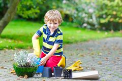 Funny little kid boy planting flowers in garden on sprinig Stock Photo