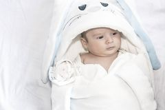 Adorable cute newborn baby boy on white background. The lovely child wore a rabbit costume with long ears. Holiday, Easter. Adorable cute newborn baby boy on royalty free stock photography